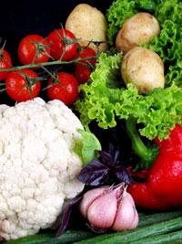 des légumes de jardin potager