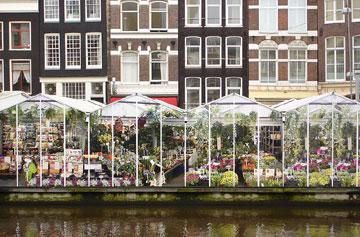 Pays-Bas : un marché aux fleurs à Amsterdam