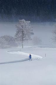 Un skieur de fond